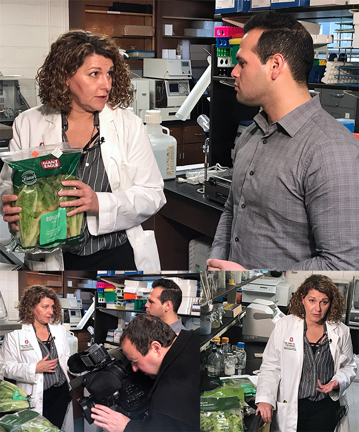 Sanja Illic talks with local news reporter about romaine lettuce recall